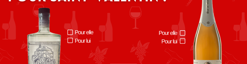 Copie de Saint Valentin 2021 MVF